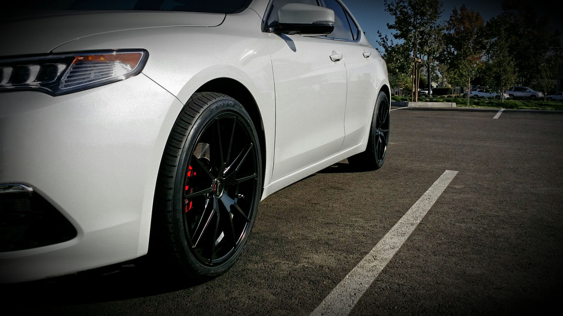 2015 Acura Tlx Tech >> Chris' TLX BWP Black Rims, Roof, & Grille - AcuraZine ...