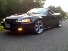 00 Mustang 7