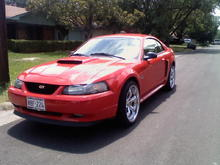 Red Stang 2