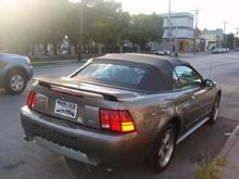 Mustang Cont Ass