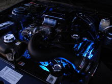 LEDGLOW 7 Color Engine Lighting Kit.  Night shows will never be the same for my car.