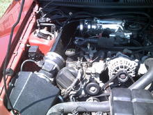 JLT Intake and 75mm Accufab TB with Plenum