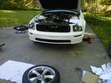 New GT front with Eleanor Grille on. Before I got the fogs