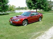 Mustang 035