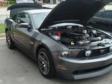 2011 GT