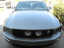 My 2005 stang