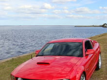 12 08 Mustang 098