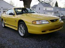 Mustang (10)
