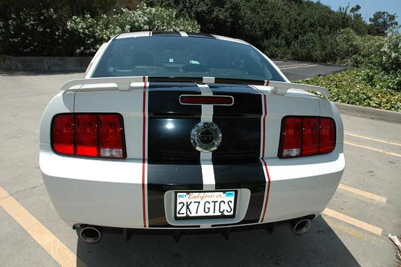 I know, I know. Smoke the tails! (maybe). Yes, my license plate matches my 'alias'.