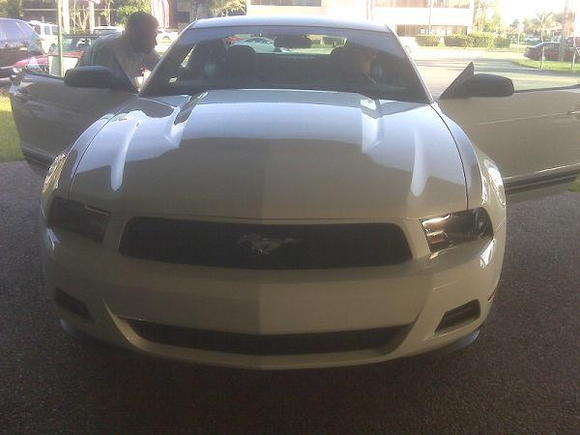 Stang1: First drive off the dealership!
