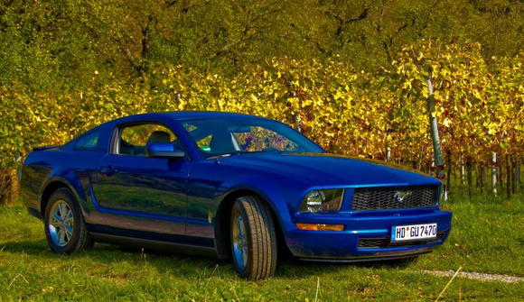 Sabine's Stang on 25 Oct 2008 with Vista Blue mirror covers