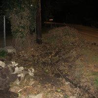 April 10, 2012: remove ivy & place fence
