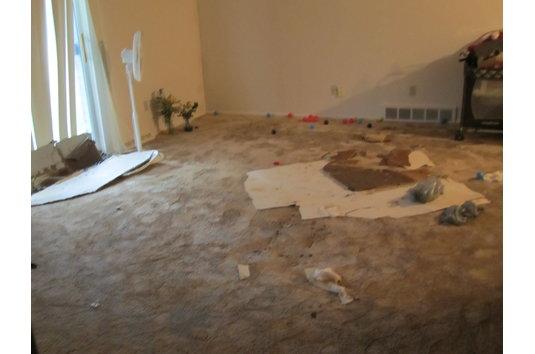 Westchester Village Apartments Reviews