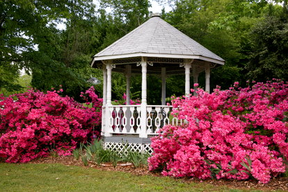 A gazebo is a large, octagonal structure in a private or public garden  space, often used as a location to congregate and relax. - Gazebo Vs. Pergola DoItYourself.com
