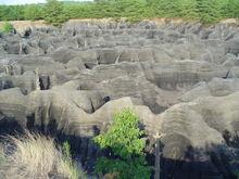 The maze at Spurgen IN