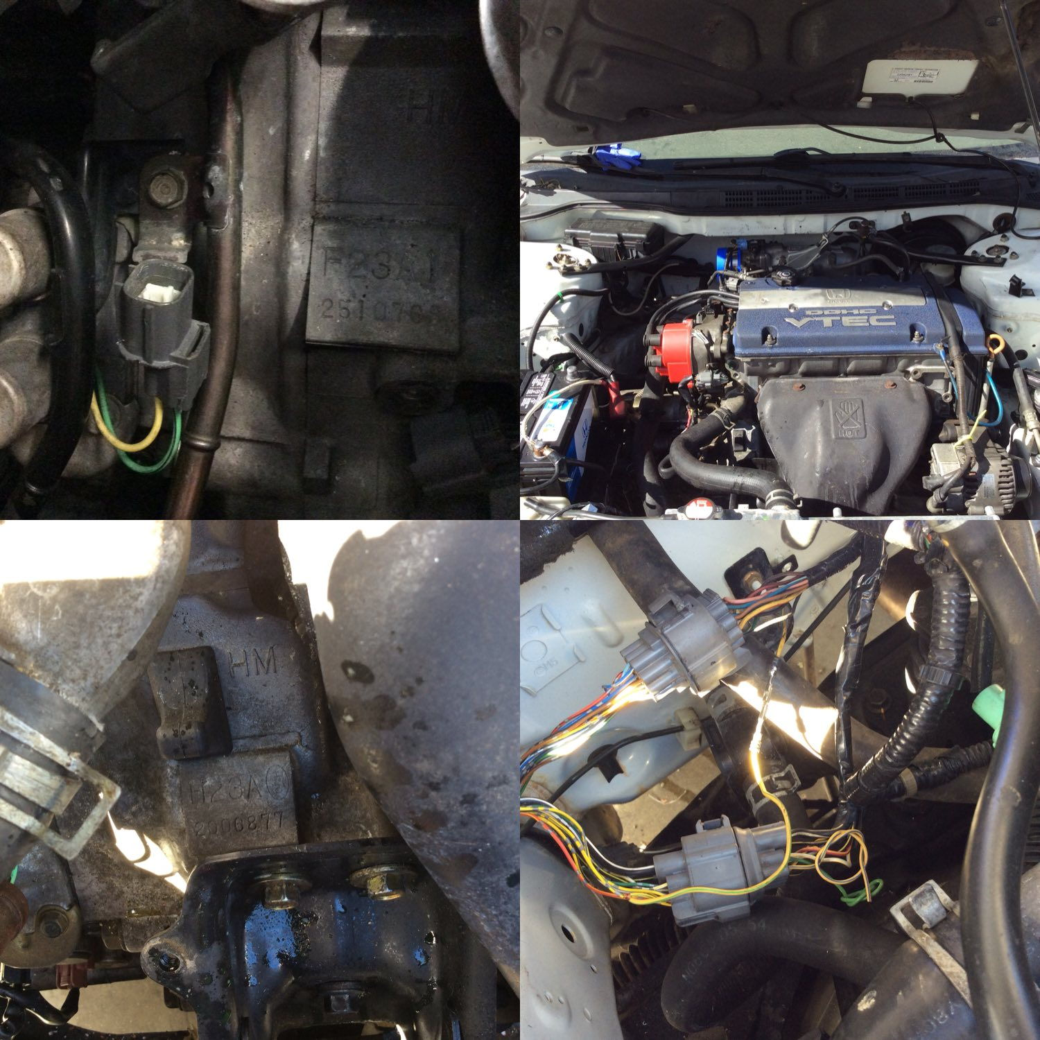 H22 Vtec Wiring Trusted Diagram H22a Harness H23a Download Diagrams U2022 Cr V Oil Pressure Switch On