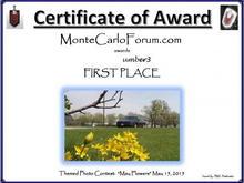 Monte Carlo Forum photo contest certificates