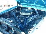 1993 Cobra 5.0 in Marilyn