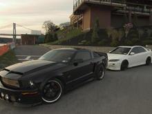 Mustang Mazda Shadows