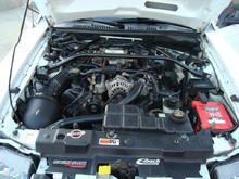 Clean-ish Engine Bay