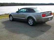Mustang@River41