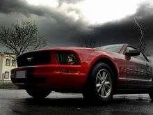 My Stang!
