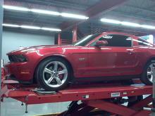 "BQuiz's 2010 Mustang GT ""Candy"""