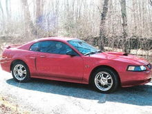 2001 GT...RIP :( Would like to trade my 6 speed z28 for another mustang!