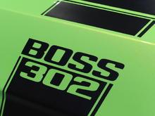 12 boss 302 gotta have it green