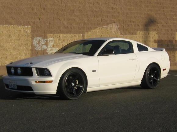 Mustang 02.08.10 002
