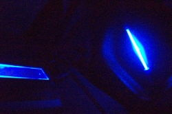 inside neon