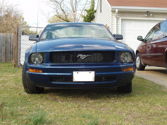 Mustang (Front)