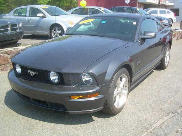 Mustang Dealer 1