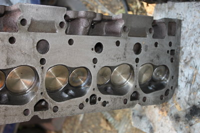 World Sportsman 2 Heads