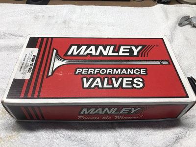 Manley Titanium Valves
