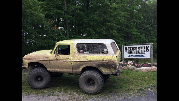 1979 Ford Bronco  for Sale $5,000