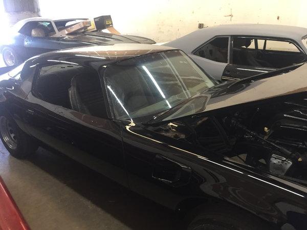 1980 Pontiac Firebird  for Sale $12,500