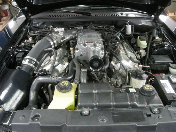 2001 Ford Mustang  for Sale $21,995