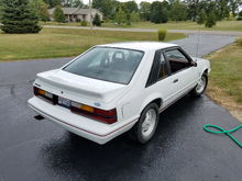 1984 Anniversary Edition for sale
