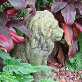I\'m not really into Yard Art, but I just love tucking Cool looking statuary into my garden where you would least expect it...