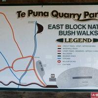 East Block Native Bush Walks