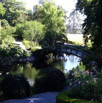 The arched bridge adds quaintness