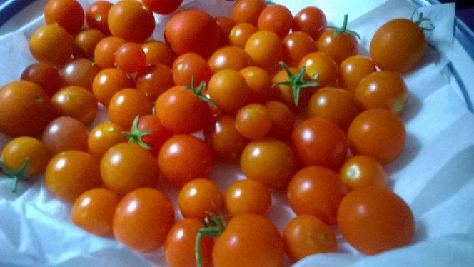 Little cherry tomatoes