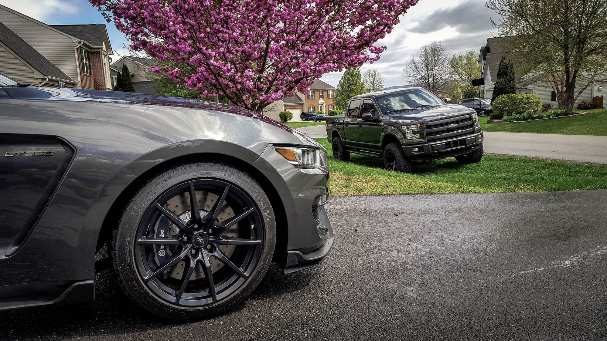 Show Your F150 And Your Mustang