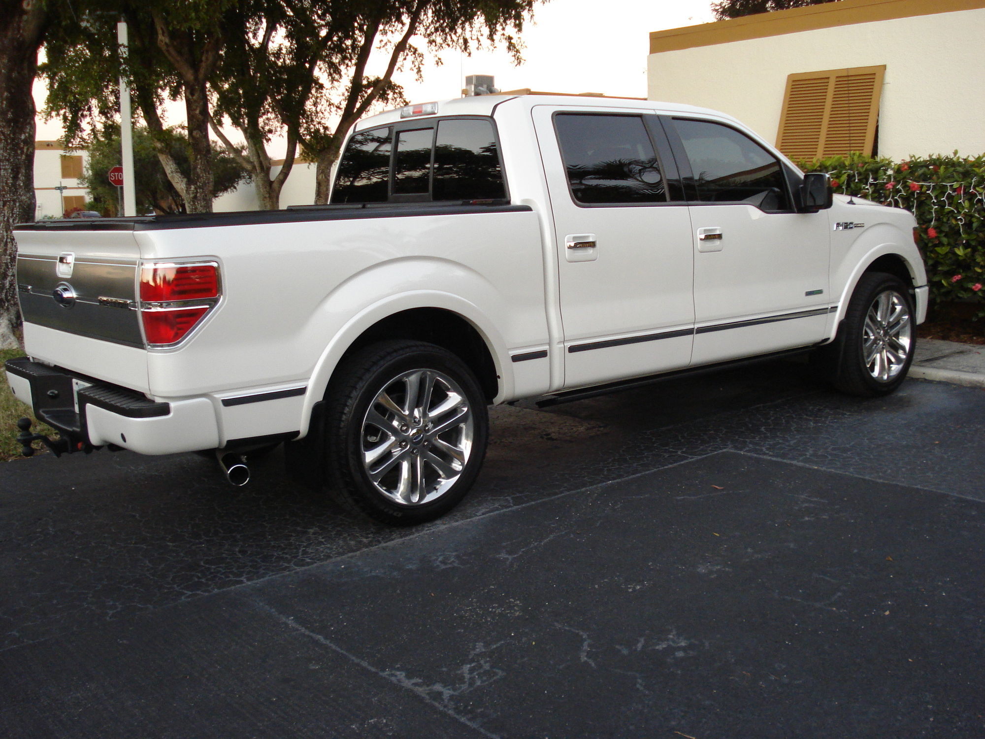 Being the 15 platinum wheels makes it more exclusive than the lower model f150 s go for it you ll love the looks