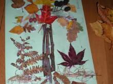 Untitled Album by Carwen*Angel - 2012-09-13 00:00:00