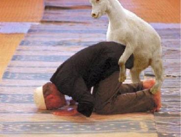 muslim attack goat