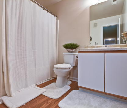 Reviews & Prices for River Birch at Town Center Apartments, Raleigh, NC