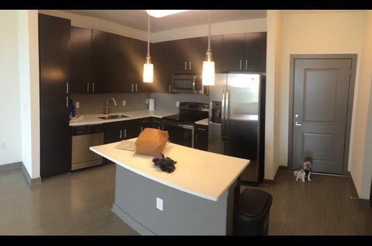 Studio Apartment Jacksonville Fl reviews & prices for spyglass apartments, jacksonville, fl