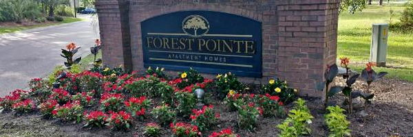 Forest Pointe Apartment Homes